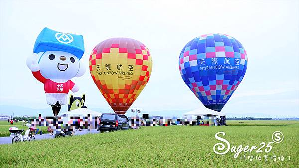 宜蘭三奇伯朗大道熱氣球25.jpg