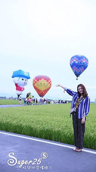 宜蘭三奇伯朗大道熱氣球31.jpg