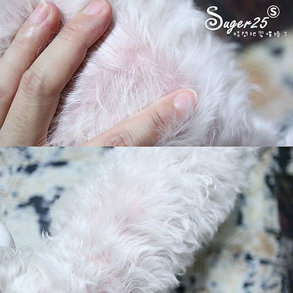 sipet矽寵礦物能量植萃全效寵物洗毛劑9.jpg