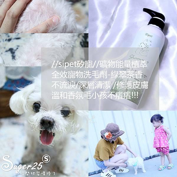 sipet矽寵礦物能量植萃全效寵物洗毛劑37.jpg