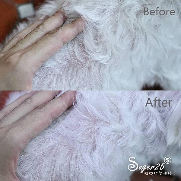 sipet矽寵礦物能量植萃全效寵物洗毛劑14.jpg
