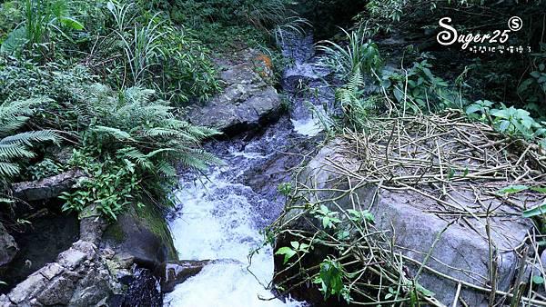 宜蘭景點礁溪免費玩水40.jpg
