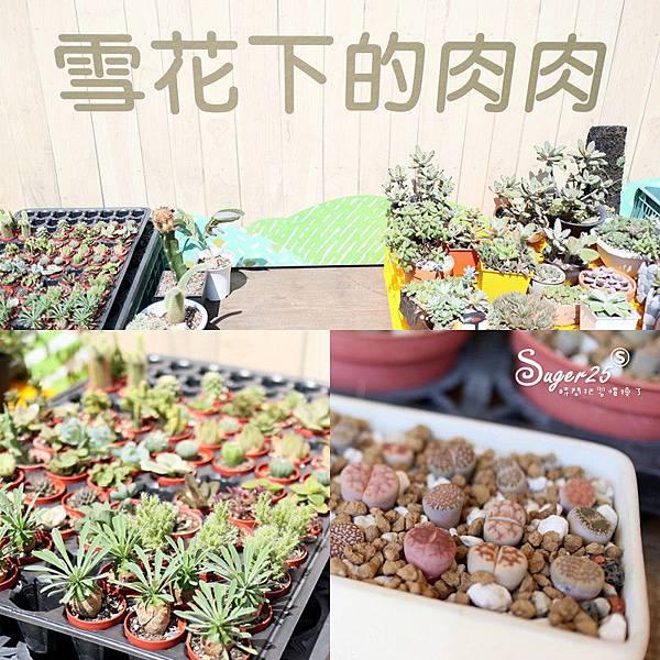 大江購物中心周年慶5.jpg