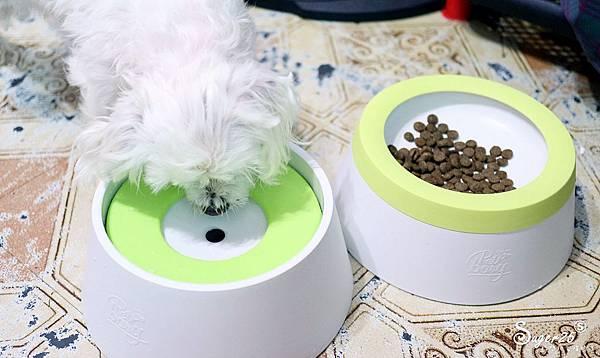 yogipet寵物碗水碗32.jpg