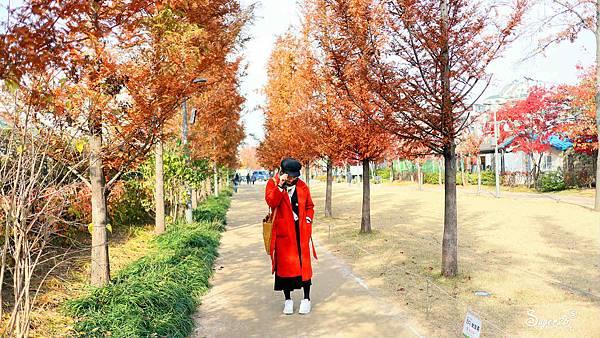 韓國自由行翔翼WIFI上網24.jpg