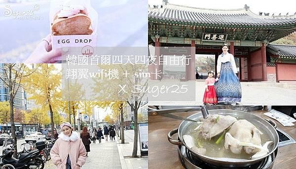 韓國自由行翔翼WIFI上網37.jpg
