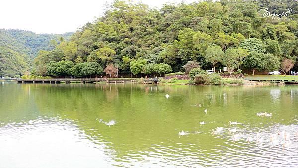 宜蘭免費景點龍潭湖41.jpg
