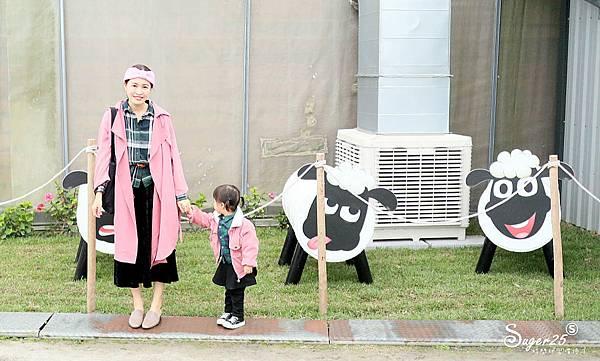 宜蘭餵鹿張美阿嬤農場23.jpg