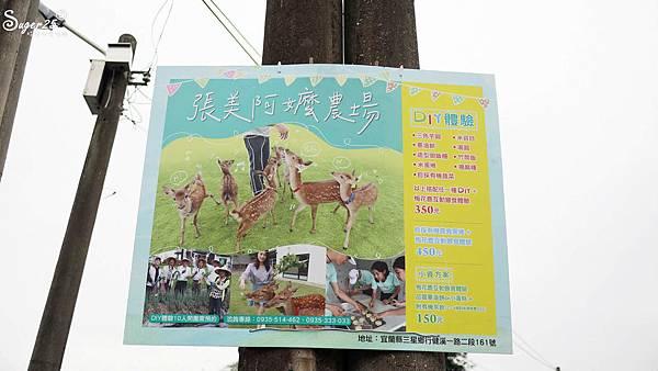 宜蘭餵鹿張美阿嬤農場24.jpg