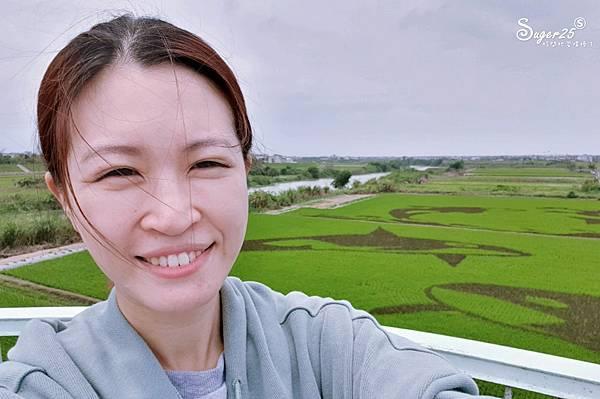 宜蘭壯圍稻田彩繪5.jpg