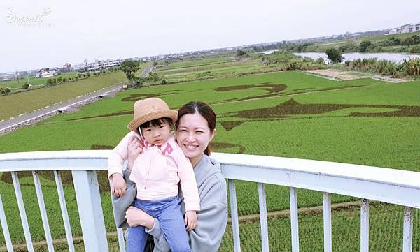 宜蘭壯圍稻田彩繪6.jpg