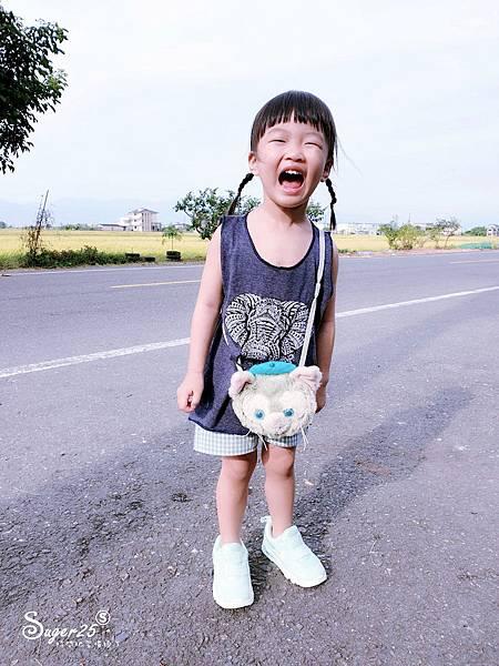 北宜公路縣界公園繡球花海2.jpg