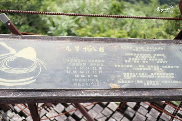 北宜公路縣界公園繡球花海29.jpg