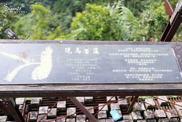 北宜公路縣界公園繡球花海32.jpg