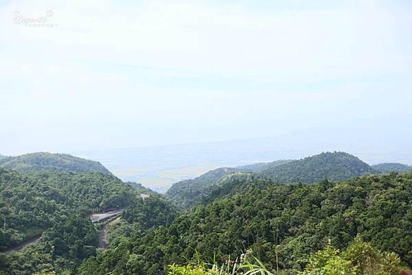 北宜公路縣界公園繡球花海33.jpg