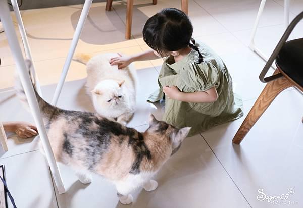 宜蘭扯貓尾港飲15.jpg