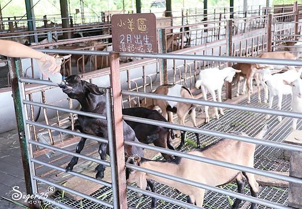 宜蘭親子宜農牧場32.jpg