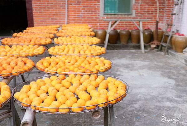 新竹北埔景點味衛佳柿餅教育農園12.jpg