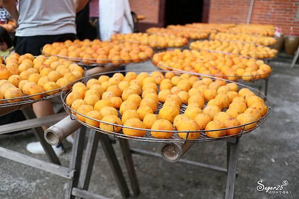 新竹北埔景點味衛佳柿餅教育農園13.jpg