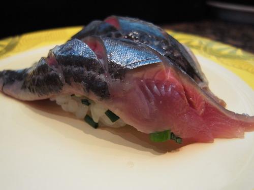 08秋刀魚.jpg