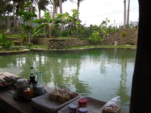 池邊的涼亭備有各式零食點心和茶、咖啡