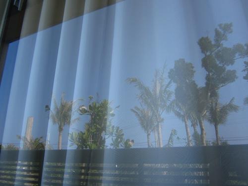 落地窗上的倒影