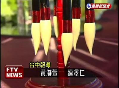 20110331民視.jpg