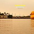 夕陽西下鴨鴨在天涯