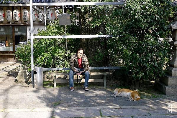 旅居日本:純粹單純。就好