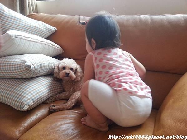20120825_154132_2_bestshot