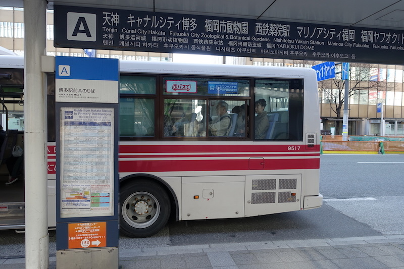 DSC09512.JPG