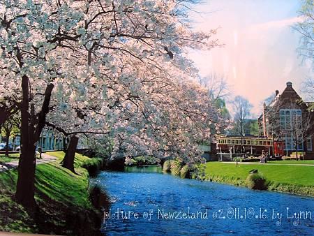Newzeland.jpg