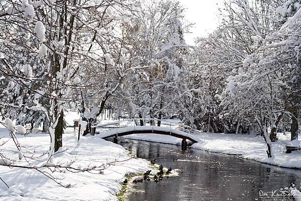 winter_scenic.jpg
