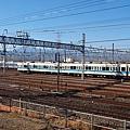 P1246697.jpg