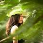 Summer Lai © Summer Lai Limited.jpg