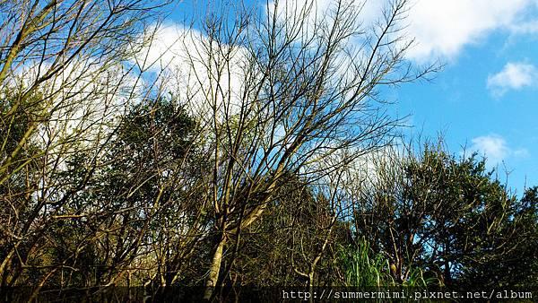 C360_2012-02-12-15-36-38.jpg