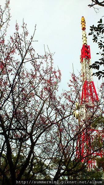 C360_2012-03-04-15-54-48