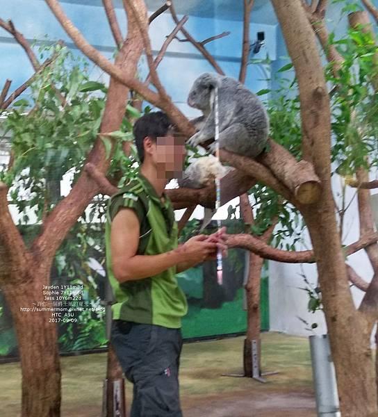 zoo-05.jpg