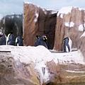 zoo-15.jpg
