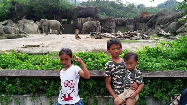 zoo-26.jpg