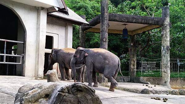 zoo-32.jpg