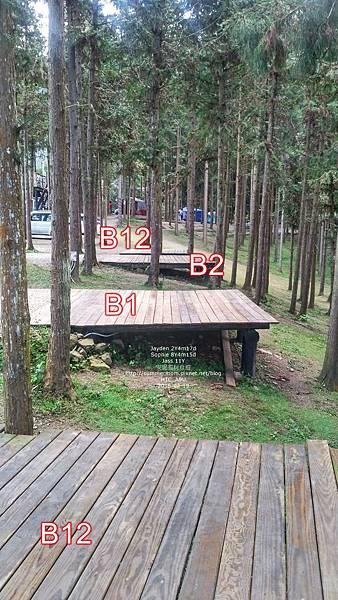 218-06.jpg