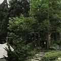 0406-19.JPG