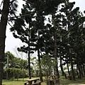 200321-04.JPG