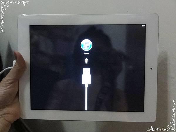 iPad14.JPG