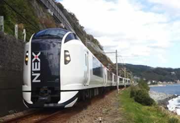 train_259.jpg