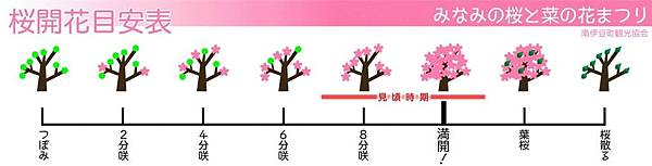 桜開花目安表.jpg