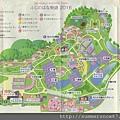 足利花卉公園2016紫藤季-002.jpg