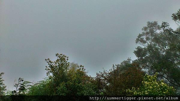 C360_2012-03-17-17-14-31