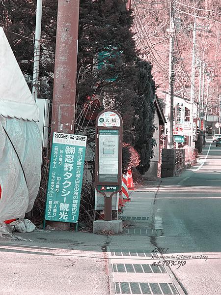 IMG_1567.jpg